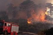 Огонь уничтожил 42 тысячи кв. км леса. // puerrtto.livejournal.com