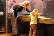 Интерактивные музеи созданы во многих городах мира. // sofo.org