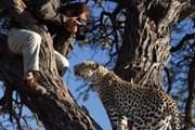 Намибия привлекает туристов уникальной природой. // iStockphoto