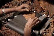 Туристы познакомятся с искусством ручной скрутки сигар. // casadecampoliving.com