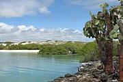 Галапагосские острова защищают от туристов. // А. Алякринский