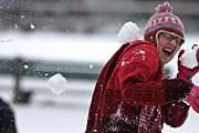 В разгар лета в Швейцарии – снег. // michellefischer.wordpress.com