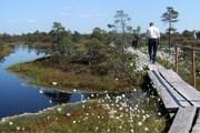 Латвия предлагает спокойный отдых на природе. // ec.europa.eu
