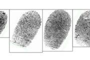 Все соискатели шенгенских виз сдадут отпечатки пальцев. // proteomesoftware.com