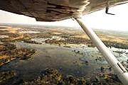 Вид на дельту Окаванго с борта легкомоторного самолета. // eturbonews.com
