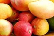 Столица манго находится в Доминикане. // jaunted.com