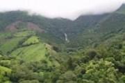 Общая площадь заповедника - около 1500 квадратных километров. // hondudiario.com