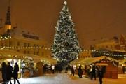 Новый год в Таллине пользуется популярностью. // finerminds.com