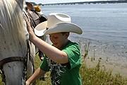 Купание пони на острове Чинкотиг . // msnbc.msn.com