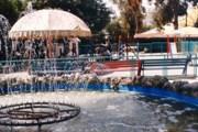 Зоопарк Лимасола - популярное место семейного отдыха. // limassolmunicipal.com