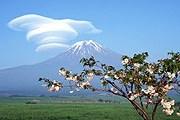 Японии нужны туристы. // wallpaperpress.com