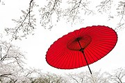 Япония предложит россиянам круглогодичный отдых. // iStockphoto / ooyoo