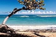На пляже в Пуэрто-Плате. // iStockphoto / Sam Aronov
