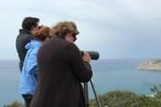 В прошлом году в мероприятии участвовало более 150 команд. // birdlifecyprus.org