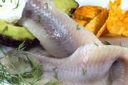Гости праздника отведают рыбные деликатесы. // cutlife.ru