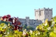Туристы познакомятся с историей и виноделием региона. // turismopenafiel.com