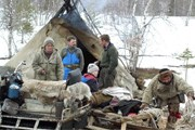 Туристы  познакомятся с жизнью оленеводов. // russedina.ru