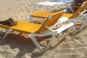 Лежаки не должны занимать более 50% территории пляжа. // Travel.ru