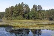 Глубина озера - около 16 метров. // artfile.ru