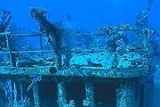 Туристам разрешили погружения к затонувшим кораблям. // photographersdirect.com