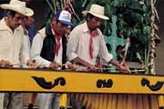 Музей будет посвящен культуре народа майя. // mayadiscovery.com