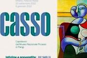 Выставка Пикассо пройдет в Милане. // news-24h.it
