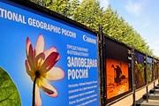 На выставке представлены фотографии разных жанров. // National Geographic