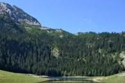 Природа Черногории привлекает туристов. // chernogora.ru