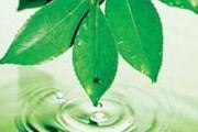 Отели смогут получить экологические сертификаты. // kontrakty.ua