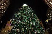 Главная рождественская ель США установлена в Нью-Йорке. // nycgo.com