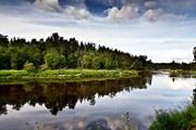 Гауя - старейший национальный парк Латвии. // Rata-News