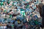 Пластик наносит ущерб природе. // lyndseyyoung.co.uk
