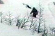 В 500 километрах от Кемерово видели настоящих йети. // paranormalparanormal.com