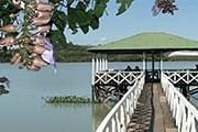 Сальвадор ждет любителей природы и приключений. // ahuachapan.site40.net