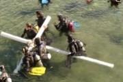 Подводное шествие устраивают в городе Пуэрто-Мадрин. // patagonia.com.ar