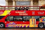 Автобусы курсируют по нескольким маршрутам. // abc.es