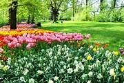 В парке высаживают тысячи тюльпанов. // arredoeconvivio.com