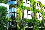 На Арбате появится вертикальное озеленение. // xn----otbglgnhpu.xn--p1ai
