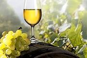 Туристы узнают о производстве вина и продегустируют напитки. // gazetaprawna.pl