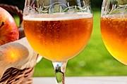 Во время экскурсий туристы узнают об истории и производстве напитка. // calvados-tourisme.com