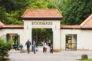 Зоопарк ждет туристов круглый год. // rigazoo.lv
