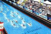 Бассейн будет иметь длину 800 метров. // japantimes.co.jp