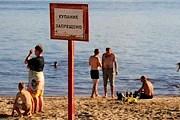 На пляжах Костромы нельзя купаться. // ria.ru
