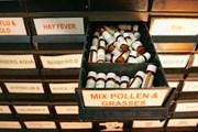 В музее представлены рукописи и лекарства. // guardian.co.uk