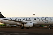 Самолет Star Alliance // Travel.ru