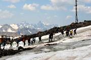Эльбрус - популярное место активного отдыха. // Travel.ru
