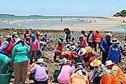 Очистка одного из пляжей Паттайи // thailand-news.ru