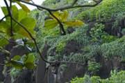 Природа привлекает туристов. // realadventures.com