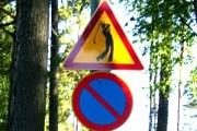 В Финляндии - более сотни гольф-полей. // Travel.ru