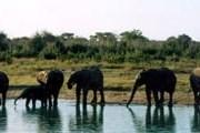 Посещение ряда африканских стран будет проще. // Travel.ru